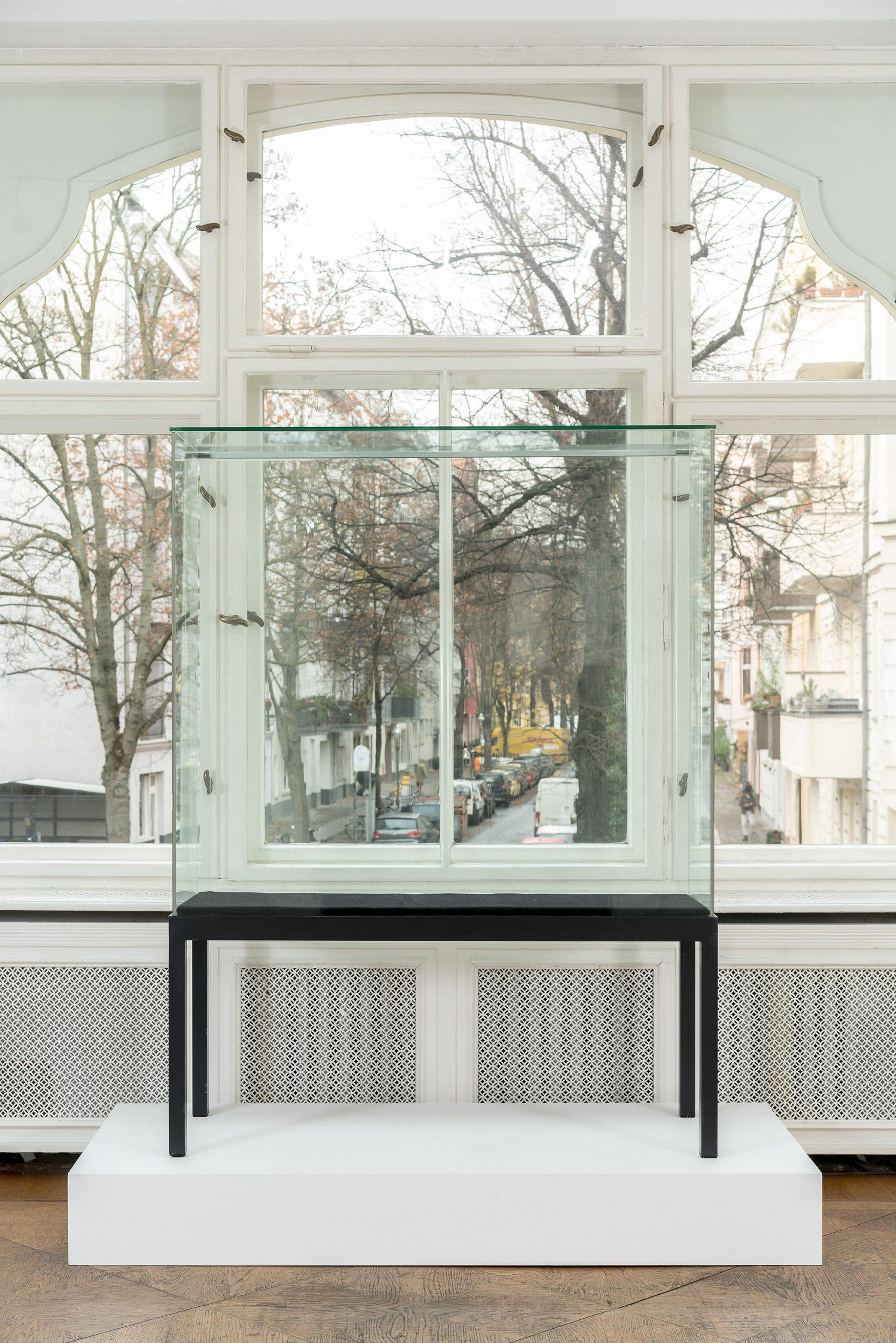 Nicholas Warburg THE OUTSIDE 2020 180 x 130 x 50 cm Display case